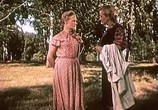 Сцена из фильма Испытание верности (1954) Испытание верности сцена 7