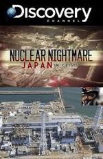 Discovery: Техногенная катастрофа: Японская трагедия