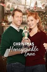 Рождество в поместье Ханисакл