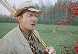 Фильм Пес Барбос и необычный кросс, Самогонщики, Сто грамм для храбрости (1961) - cцена 2