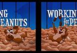 Сцена из фильма Работа за орехи / Working for Peanuts (1953) Работа за орехи сцена 5