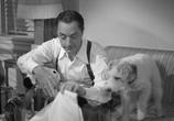 Фильм Другой тонкий человек / Another Thin Man (1939) - cцена 4