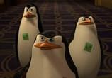 Сцена из фильма Пингвины из Мадагаскара в рождественских приключениях / The Madagascar Penguins in a Christmas Caper (2005) Пингвины из Мадагаскара сцена 7