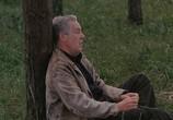 Сцена из фильма Жертвоприношение / Offret (1986) Жертвоприношение сцена 1
