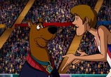 Сцена из фильма Скуби-Ду!: Олимпийские игры, Забавные состязания / Scooby-Doo! Laff-A-Lympics: Spooky Games (2012) Скуби-Ду!: Олимпийские игры, Забавные состязания сцена 8