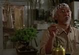 Сцена из фильма Парень - каратист / The Karate Kid (1984) Парень - каратист сцена 1