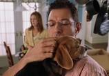 Сцена из фильма Кошки против собак / Cats & Dogs (2001) Кошки против собак сцена 7