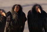 Сцена из фильма Северная Америка / North America (2013) Северная Америка сцена 25