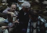 Сцена из фильма Бермудский треугольник / Trójkat bermudzki (1988) Бермудский треугольник сцена 15