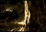 Мультфильм Каена: Пророчество  / Kaena: La prophetie (2003) - cцена 6