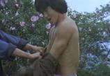 Сцена из фильма Бесстрашная гиена 2 / Long teng hu yue (1983) Бесстрашная гиена 2 сцена 2