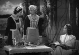 Фильм Ковбой и леди / The Cowboy and the Lady (1938) - cцена 3