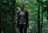 Фильм Лес призраков / The Forest (2016) - cцена 9