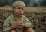 Сцена из фильма Забастовка / Jób lázadása (1983) Забастовка сцена 9