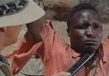 Фильм Сафари / Safari (1956) - cцена 9