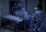 Фильм Близнецы из Айдахо / Twin Falls Idaho (1999) - cцена 3