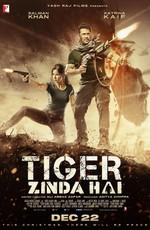 Тигр жив / Tiger Zinda Hai (2018)